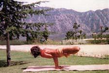 Yogi en équilibre